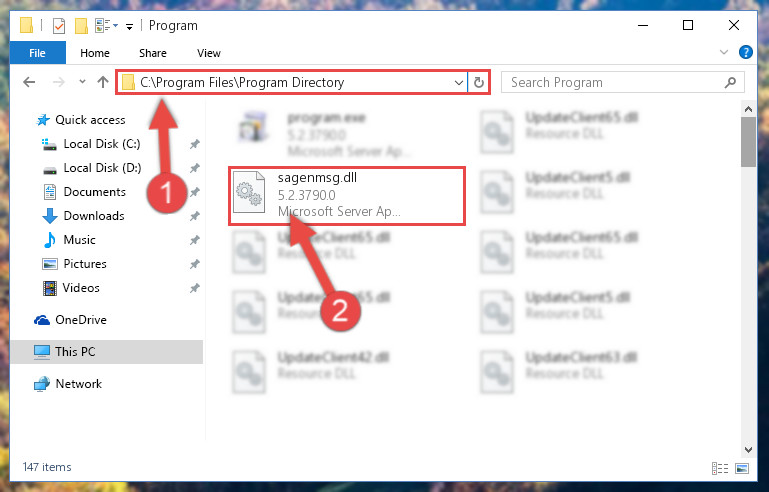 Pasting the Sagenmsg.dll library into the program's installation directory